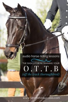 Some tips and exercises to help you get the best from your retired racehorse | Audio horse riding lessons | Daily Strides Podcast