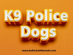 Browse this site https://storify.com/policek9forsale for more information on Police K9 For Sale. K9 Police Dogs are huge in dimension and are very smart and as a result of these two features they can be educated to assist policemen in their work.This type of dogs has a long record of functioning as police dogs and returns to early 20th century when they were utilized as police dogs. Follow us http://policek9forsale.journoportfolio.com