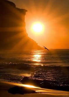 Sunset Beauty - My Lovely World - Google+