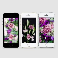 A set of original botanical wallpapers to download for your smart phone. Pretty up your mobile for Spring! iPhone & Android.