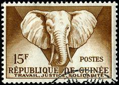 French Guinea 15F Elephant