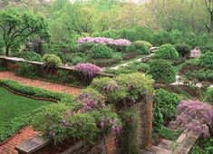 Dumbarton Oaks - Georgetown - DC This place is amazing!