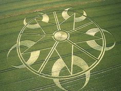 Extravagant Crop Circle Design