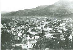BU-F-01073-1-04708 Piatra Neamţ, vedere generală, 1913 (niv.Document)