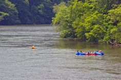 french+broad+river+asheville+nc | Tube the scenic French Broad River in Asheville, NC with Zen Tubing.