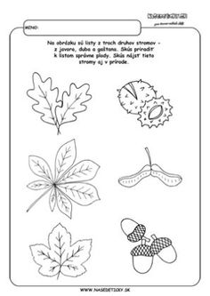 Jesenné pracovné listy pre deti Abc Activities, Autumn Activities For Kids, Preschool Worksheets, Science For Kids, Tree Identification, Fall Coloring Pages, Autumn Crafts, Nature Journal, Origami Art