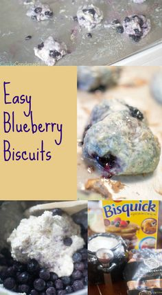 Easy blueberry biscuit recipe