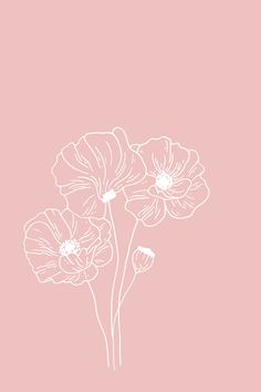 Poppy Floral Illustration - The Language of Flowers - Bea Bloom Creative Design Studio Art And Illustration, Floral Illustrations, Botanical Illustration, Line Art Design, Floral Drawing, Drawing Flowers, Language Of Flowers, Easy Watercolor, Pattern Drawing