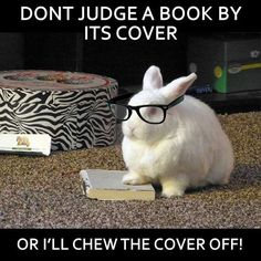 Don't judge a book by its cover!