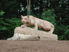 penn state pictures - Google Search