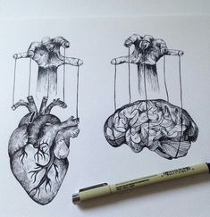 brain & heart ... wish i could control both at times!                                                                                                                                                                                 More