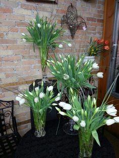 All white tulips designs