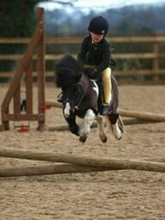 Too cute! Everybody starts somewhere ;) Little girl show jumping pony.