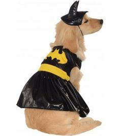 Batgirl Dog Costume #batgirl #batman #costume #puppy #dog #superhero #hero