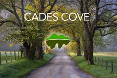 Want to know everything you need to know about a trip to Cades Cove? Click here: http://www.visitmysmokies.com/blog/smoky-mountains/everything-need-know-planning-trip-cades-cove-summer/