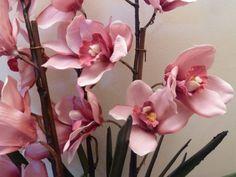 Jak si z obyčejné orchideje z obchodu vypěstovat takovou to nádheru? Stačí Vám k tomu udělat tento trik! - Zkustosám cz The Incredibles, Garden, Flowers, Plants, Bouquets, Silk, Blog, Garten, Bouquet