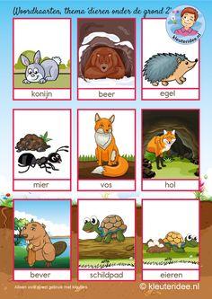 Woordkaarten, dieren onder de grond, kleuteridee, free printable 2.