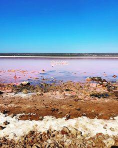 Pink Lake, Port Gregory Australia Pink Lake, Caravan, Exploring, Travel Photography, Australia, Mountains, Beach, Water, Outdoor