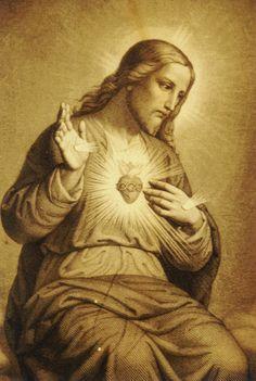 † Almas Devotas: 1o. Dia - Mês do Sagrado Coração de Jesus