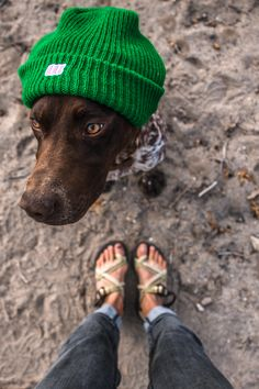 #chaco #camping #outdoors #adventure #dogs chacos.com Photo Credit: Jillian Lukiwski / The Noisy Plume