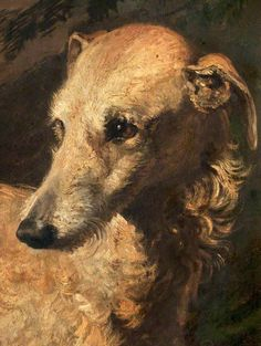 Sir Edwin Henry Landseer Head of 'Driver', a Deerhound Owned by the 5th Duke of Gordon
