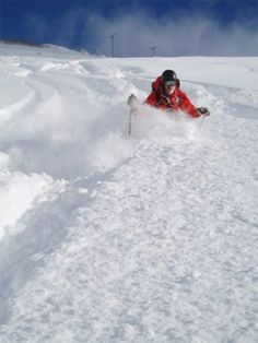 Powder skiing in Utah. photo SkiUtah.com