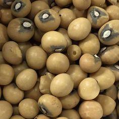 Also known as hog peanut, bambara groundnut, bambara-bean, Congo goober, earth pea, or ground-bean. Mung Bean, Light Recipes, Seeds, Potatoes, Fruit, Vegetables, Congo, Food, Gardening
