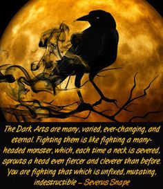 The Dark Arts are Many Severus Snape Quote from Harry Potter Quotation