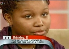 The Most Amazing & Ridiculous Maury Povich Screenshots Ever.  This is the most random, hilarious thing I have ever read!