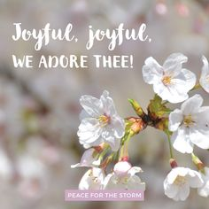 Joyful, joyful, we adore Thee / God of glory, Lord of love / Hearts unfold like flowers before Thee / Opening to the sun above.