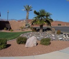 Awesome Desert Landscaping Ideas for Yard Frontyard Inspirations