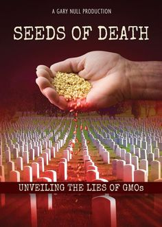 """""""Seeds of Death"""" award-winning documentary exposing the truth about GMO's (genetically-modified organisms) and Monsanto Gmo Facts, Genetically Modified Food, Genetics, Good To Know, Natural Health, Health And Wellness, Seeds, Death, The Cure"""