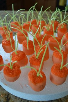 Marshmallow Carrots-  fun food idea for Easter...sprouts are edible candy grass found at Target, Michael's and World Market; carrots are candy coated marshmallows with sugar sprinkles
