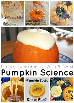 Fun for fall homeschool science and Exploring Creation with Botany: Pumpkin Science Fall Themed Science And Sensory Play Saturday Science Linky… Fall Preschool, Kindergarten Science, Science Classroom, Preschool Activities, Classroom Ideas, Future Classroom, Montessori Kindergarten, Preschool Lessons, Indoor Activities