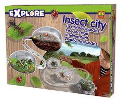 Ses Insecten Stad