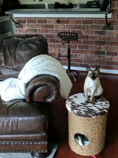 Rope ottoman with kitty cubby