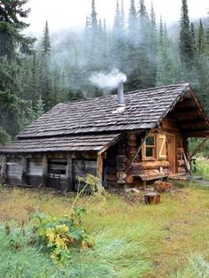 Log cabin surrounded by forest.