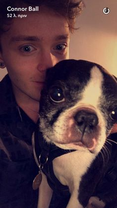 Connor Cute Boys, My Boys, 1d And 5sos, The Vamps, Im In Love, Boy Bands, Make Me Smile, Boston Terrier, Bae