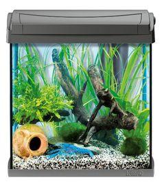 Tetra AquaArt Crayfish Aquarium-Komplett-Set 30 L, für Krebse und Garnelen mit innovativer Technik und einfacher Pflege
