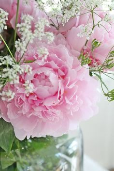 """Peony --- the power of scent.  I have always been drawn to smells, much more than sound or sights.  The scent of the peony has long been noted as my personal """"soul scent"""".  If you've ever had a real passion/attraction to some aroma, you'll know what I mean."""