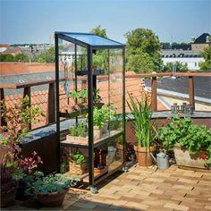 18 Best Juliana Gewachshaus Images Glass House Green Houses