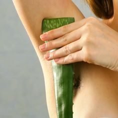 Aloe Vera Plant Luxury Beauty Retreatment Benefits are so useful and beneficial you can find it world over, packed and sealed. There are 300 varieties of Aloe Vera plant with many different medicinal benefits Beauty Tips For Glowing Skin, Health And Beauty Tips, Beauty Skin, Health Tips, Skin Tips, Skin Care Tips, Beauty Care, Beauty Hacks, Facial Tips