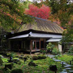 教林坊 書院 #滋賀 #教林坊 #書院 #寺社仏閣 #庭園 #japan #temple #ig_nihon #icu_japan #mobile_perfection #IGersJP #exclusive_mobile #ig_japan #beautiful #pretty #amazing #iphoneonly #nofilter #mobilephotography #shiga #garden