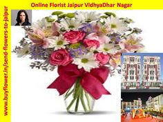 Online Florist Jaipur VidhyaDhar Nagar Is The best Florist In Jaipur VidhyaDhar Nagar For Send Flowers To Jaipur VidhyaDhar Nagar