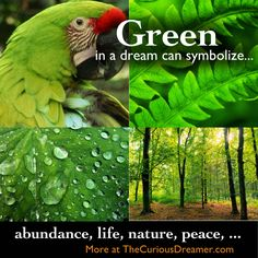 Season dream meaning interpretation season seasondreammeaning green in a dream can symbolize more at thecuriousdreamer dreammeaning malvernweather Images