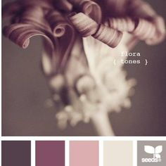 Design Seeds {flora color} | Book Preview