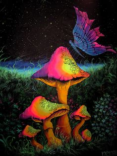 this is actually kinda cool whish i could put this in my room (Cool Paintings Trippy) Psychadelic Art, Trippy Wallpaper, Stoner Art, Black Light Posters, Psy Art, Mushroom Art, Hippie Art, Visionary Art, Fractal Art