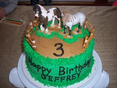 horse themed party for my son