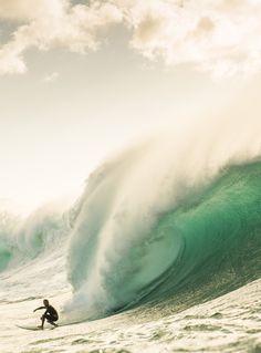 Hawaii: It's Only Just Begun