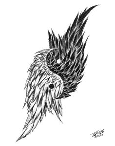 drawings of feathers | Feathered Ying Yang Drawing by Peter Piatt - Feathered Ying Yang Fine ...